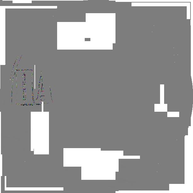 Hajnáczky Foto